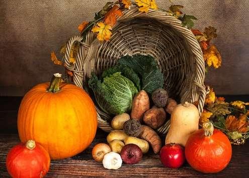 Agricoltura biologica - Photo credit: Pexels - Pixabay