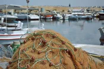 Pesca - Photo credit: Foto di Peggy Choucair da Pixabay